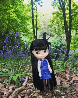 Spock amongst the bluebells... My favourite flower. Dressed in her new Star Trek print overall dress. 💙🌼#dollcollector #blythedoll #blytheuk #spock #startrekdoll #trekgirl #blythesewing #bluebells #dollphotography