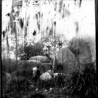 Wounded landscape #photography #glassnegative #analogue #fineart #filmisnotdead #forest #rock #outdoors #travel #environment #naturelover #dark #melancholy #picture #landscape #loneliness #barren #wounded #hurt #blackandwhite #monochrome #photooftheday #n