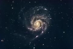 Pinwheel Galaxy (M101) in LRGB (Carballada) Tags: astrophotography astronomy deep space astro celestron zwo as1600mmc skywatcher gso rc8 sky qhy qhy5iii174 astrometrydotnet:id=nova2069081 astrometrydotnet:status=solved