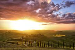 Baccoleno (judith.kuhn) Tags: toskana tuscany italien italy reise travel allee alley zypressen zypressenallee cypresses landscape landschaft landgut manor hill hügel sky himmel wolken clouds sunset sonnenuntergang agriturismo baccoleno