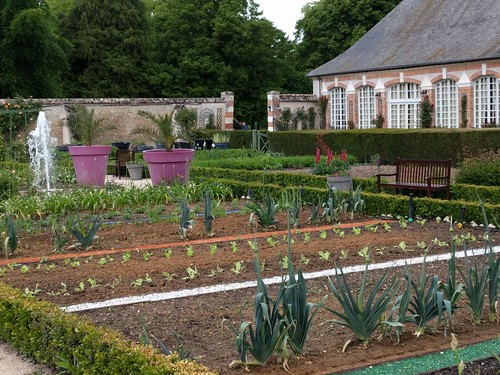 The veg garden at Chateau Cheverny