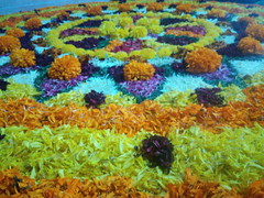 IMG_20160914_093612 (bhagwathi hariharan) Tags: onam pookalam flower rangoli kolam carpet floral nalasopara nallasopara virar aathapookalam tiruonam