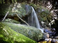 BMLeura28 (Iksana Imagery) Tags: bluemountainsnationalpark leura waterfalls