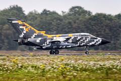 46+29 (Shnipper) Tags: germanyairforce ehvk tornadoecr landing tsyupka shnipper spotting natotigermeet2010 ntm2010 aircraft airplane pentax k7 tokina80400 4629 volkel