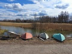Soon....! (KaarinaT) Tags: bowboats boat upsidedown hollolakk päijänne reeds lake water vegetation finland suomi sky clouds