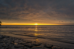 20170501-DSC_5043 (the Mack4) Tags: 2017 lakeontario may newyork niksoftware sunset water webster websterpark clouds yellow