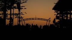 Surfer's Paradise (niel13_casio) Tags: day sunset golden hour goldenhour city urban strret yellow landscape sign australia goldcoast downtown silhouette colorful