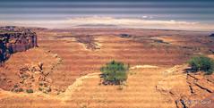 Island in the Sky, Canyonlands National Park, Utah (USA) - June 2016 (SridharSaraf) Tags: 2016 canyonlandsnationalpark canyonlandsnationalparkphotography islandinthesky islandintheskyphotography nationalpark nationalparkphotography photography sridharsaraf summer usa ut utphotography unitedstates unitedstatesofamerica untedstatesphotography utah utahphotography