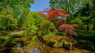 Clingendael Japanese Garden