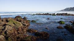 Pacific Coast (jimbobphoto) Tags: california lajolla ocean pacificocean rocks wa waves water
