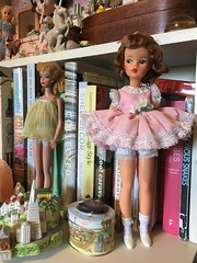 (andersonsmith.katie) Tags: tammy doll ideal vintage barbie shelf display collection