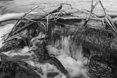 jake_marsh001 (MarshPhotography) Tags: stanthony river