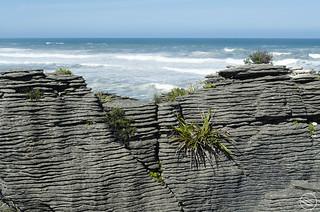 Pancake rock layers (New Zealand)