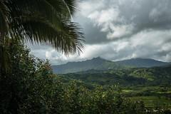 Hawaii (Ben Haller) Tags: hawaii kauai na pali napali beach landscape nikon nature