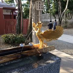 Chozu in Fukagawa Hachiman Shrine (walking.biking.japan) Tags: chozu shrine kotoku tokyo