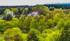 Gravel Plant Piederstorfer, Munich (Wolkenkratzer) Tags: piederstorfer neuperlach munich münchen truderingerwald gravelplant alexisweg wood karlmarxring alps mountains föhn
