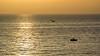 DSC_2109 (Giovanni Valentino) Tags: sicilia sicily aspra bagheria mare pescherecci sole riflessi alba nikon d750 200500 sun sunrise