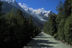 l'arveyron - chamonix - Haute-Savoie (jamesreed68) Tags: arveyron arve rivière eau rhônealpes chamonix neige glace montagne arbres paysage nature hautesavoie dôme gouter aiguille montblanc canon eos 600d