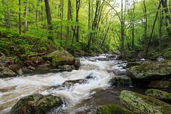 Little Stony Creek (repete7) Tags: hike pembroke virginia unitedstates cascades littlestonycreek geotagged usa gilescounty gilesco canon canon1585 polarizer