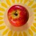 Content Area Resourse Binder for grades Kindergarten - 3