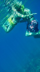 underwater pas de deux (stephenweir) Tags: snorkel snorkeling underwaterpasdeux reef younglovecouplemissedthegreatlahainahawaiireef younglove diving underwaterpictures islandoflanai lanai lanaireef lanaisnorklepark