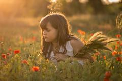 Spring fields (Nathalie Le Bris) Tags: spring primavera amapola poppy coquelicot atardecer sunset backlight contraluz