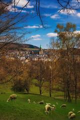 Annaberg - St. Annenkirche (Plattner Rene´) Tags: annaberg erzgebirge welt berge zauberei sachsen dream frühling gebirge magic