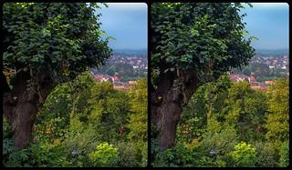 Blankenburg Gardens 3-D / Cross-View / Stereoscopy / HDRaw
