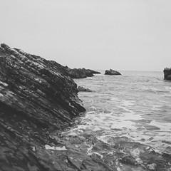 Primordial Soup (pt.iii) (Chelsea Branch) Tags: filmisnotdead staybrokeshootfilm 35mm 120mm ilfordpanfplus50 ilford ilfordpanf california lubitel166b lubitell166b landscape seascape grainisgood blackandwhite