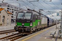 ELL E193.239 (DavideEos) Tags: treno train zug eisenbahn ferrovia railway divača merci frieght binari güterzug ell siemens vectron e193