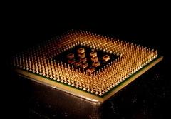 Defenceless CPU (glyn_nelson) Tags: macromondays chips cpu macro pentium chip intel