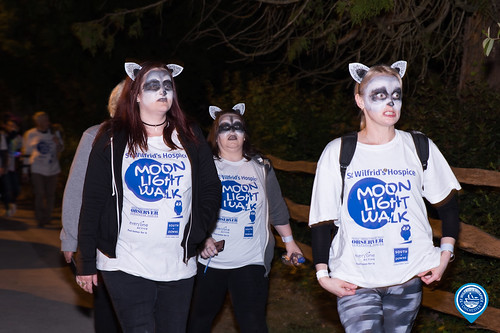 Moonlight Walk 2017