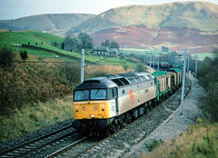 Just the one Oldie...I seem to recall this service ran under the engineers banner...but on this occasion was anything but.....4M63 47365 Mossend-Warrington Low Gill 12-09-1999 (the.chair) Tags: 6m65 47365 mossendarpley low gill sept 1999