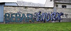 Bebar  •   HNRX (HBA_JIJO) Tags: streetart urban graffiti vitry vitrysurseine art france hbajijo wall mur painting letters aerosol peinture lettrage lettres lettring writer paris94 spray mural bebar bombing urbain hnrx
