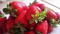 "1 Dessert Fragole e Ricotta • <a style=""font-size:0.8em;"" href=""http://www.flickr.com/photos/150016852@N04/34298641806/"" target=""_blank"">View on Flickr</a>"