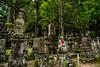 Koyasan, Wakayama Prefecture, Japan (David Ducoin) Tags: asia boudhism forest japan koyansan mysterious natue religion koyasan wakayamaprefecture jp