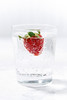 glass of carbonated water with fresh strawberries (cook_inspire) Tags: lemonade beverage berry drink glass summer strawberry fresh food refreshment juice fruit healthy cold fizzy sweet cocktail white cool sparkling water background closeup mint freshness herb carbonated soda slice ingredient ice delicious detox nonalcoholic organic party