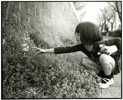 HANA (Tamakorox) Tags: daughter family girl portrait art japan japanese kimono asia light shadow pleasure love 娘 家族 日本 日本人 光 影 喜び 愛 film analoguecamera b&w mamiyarb67prosd kodaktmax400 fujibrovarigradewp