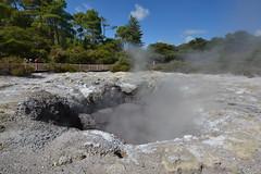 Wai-o-tapu which means Sacred Water in Maori (Lim SK) Tags: wai o tapu waiotapu thermal sacred water maori