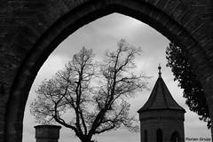 I_B_IMG_4639 (florian_grupp) Tags: burghohenzollern hohenzollern zollernalb schwäbischealb germany deutschland badenwürttemberg preussen castle historic gothic neogothic hill silhouette medieval