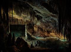 Agujas (candi...) Tags: cuevasdeldrach estalactitas estalacmitas cueva portocristo mallorca piedra subterráneo sonya77 naturaleza nature