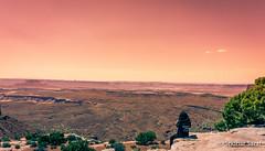 Island in the Sky, Canyonlands National Park, Utah (USA) - June 2016 (SridharSaraf) Tags: 2016 canyonlandsnationalpark canyonlandsnationalparkphotography islandinthesky islandintheskyphotography landscape landscapephotography nationalpark nationalparkphotography nisha photography sridharsaraf summer usa ut utphotography unitedstates unitedstatesofamerica untedstatesphotography utah utahphotography moab