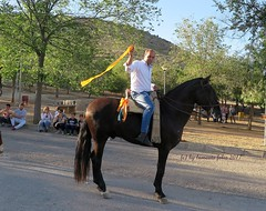 Mundo del caballo-Carrera de cintas a  caballo 2017-Alameda (Málaga) (lameato feliz) Tags: caballo deporte carreradecintasacaballo alameda pueblosdemálaga