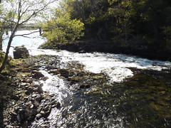 River Morar.06 (Gooders2011) Tags: rivermorar scotland scottishhighlands shortest