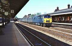 Loco D1058  |  Newbury, Berks UK  |  1976 (keithwilde152) Tags: d1058 westerns thousands br class52 newbury berkshants uk 1976 station platforms tracks town parcels train diesel locomotives outdoor spring sun