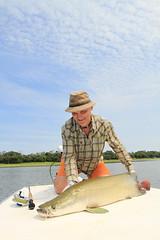 Pirarucu (Arapaima_Fishing) Tags: pirarucu arapaima fishing fly