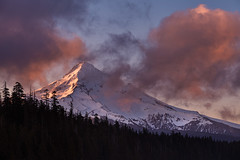 Mt Hood Sunrise from Lost Lake (seanhaselden) Tags: hood mthood sunrise oregon clouds alpenglow color trees forest lake mountain mountains glow northwest canon