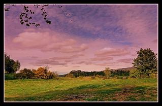 Walking in Stirling