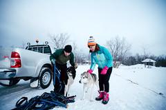 Dog Sledding (鏡頭裡總有豐收) Tags: dog sledding sweden abisko arctic sony a7r2 travel