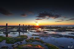 sainte flavie Sur Mer (yannick_gagnon) Tags: quebec québec paysage landscape landscapesdreams canada coucherdesoleil